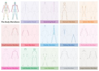 Body Meridians Chart Colored
