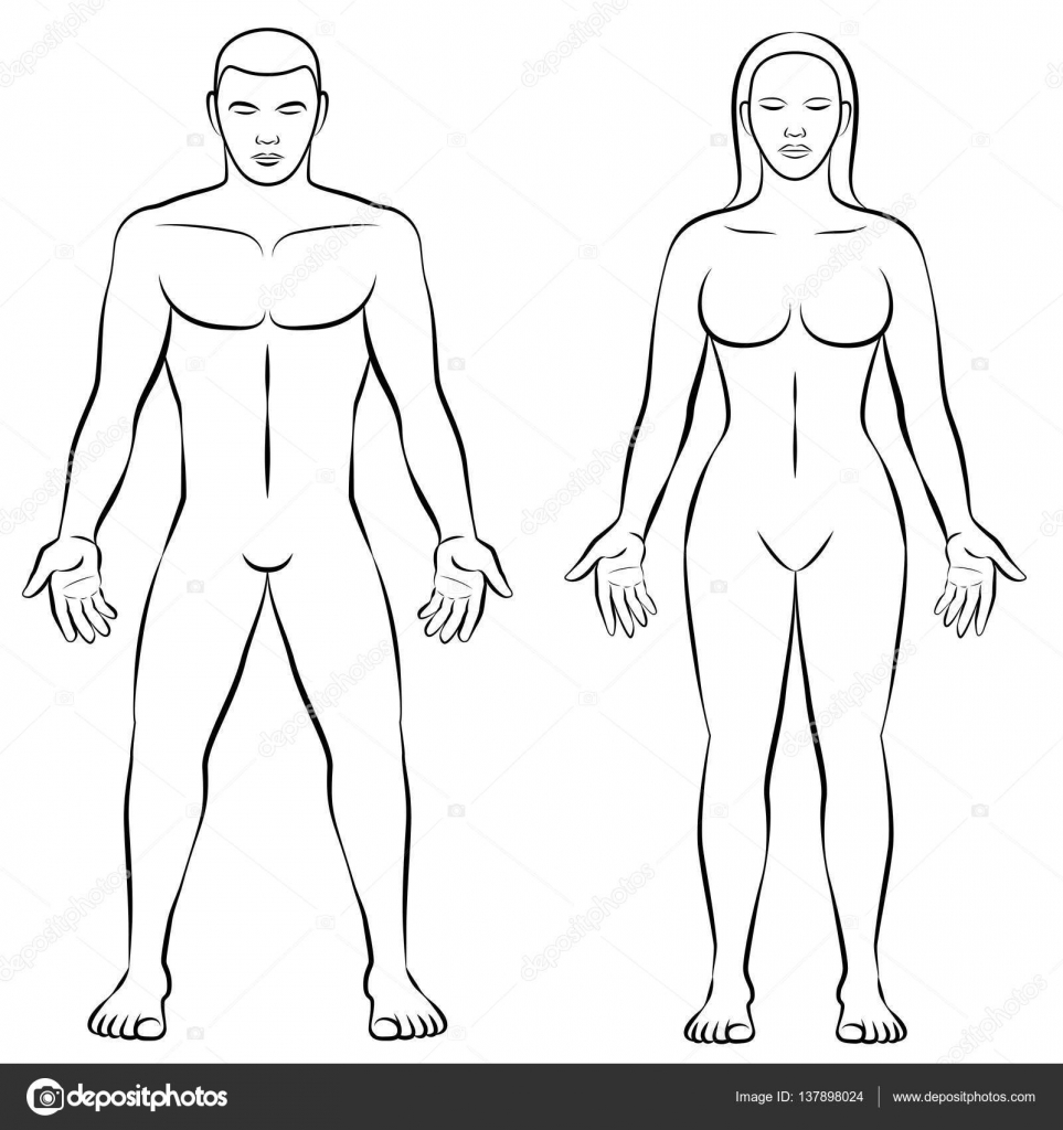 Forma de cuerpo femenino cuerpo masculino ilustración masiva ...