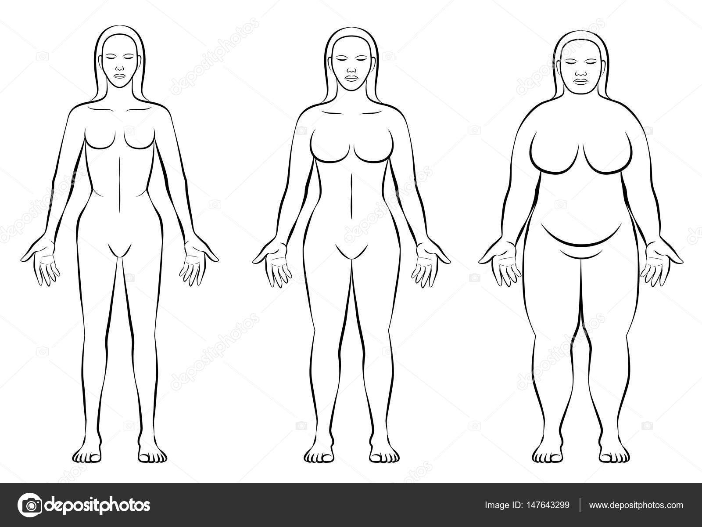 Weiblichen Körper Verfassung Arten dünnen Fett Normalgewicht ...