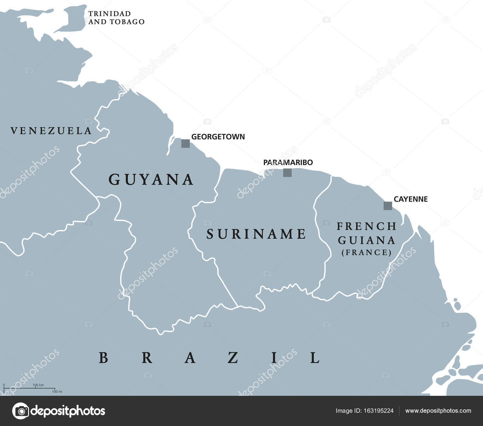 Guyana Suriname And French Guiana Political Map Stock Vector