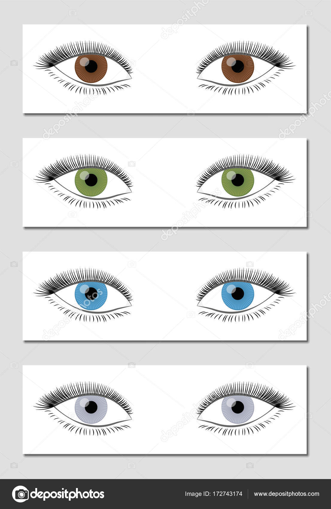 Eye color chart brown green blue gray stock vector furian eye color chart brown green blue gray stock vector 172743174 nvjuhfo Image collections