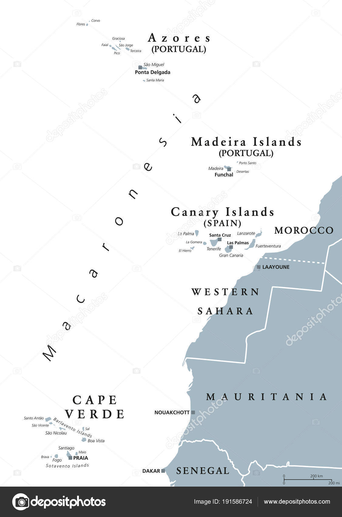 Map Of Canary Islands And Africa.Map Of Madeira And Canary Islands Macaronesia Gray Map