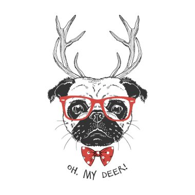 cute portrait of xmas pug with deer horns