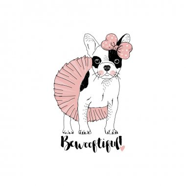 beautiful french bulldog girl dressed up in ballerina skirt