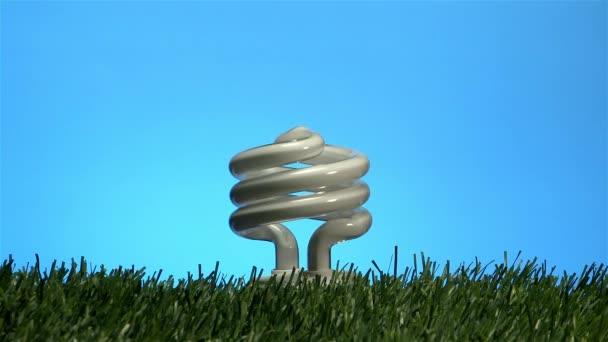 žárovka zapnutí a svítící trávy