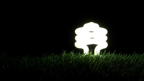 light bulb illuminating and flashing on grass , energy concept
