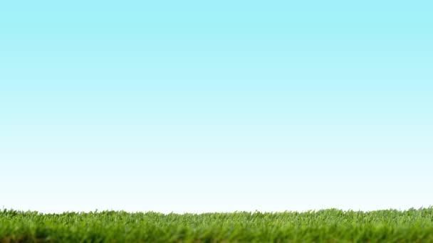 Koncept prostředí ECO s trávou, eco domy a zelenými rostlinami na modrém pozadí