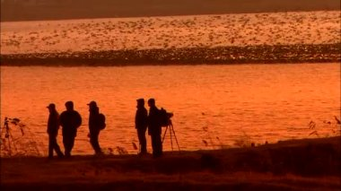 Silhouettes of photographers on coast near sea