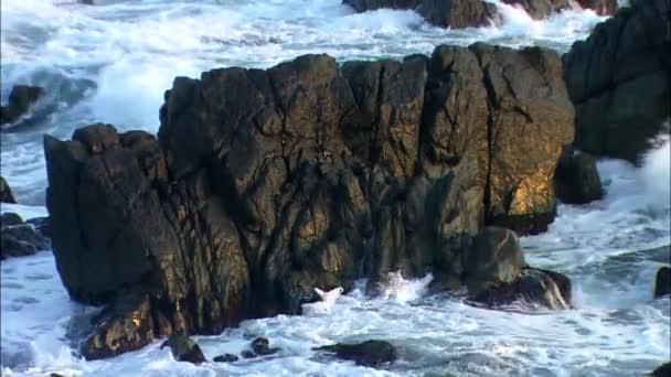 Lemossa a víz tengerre rocks