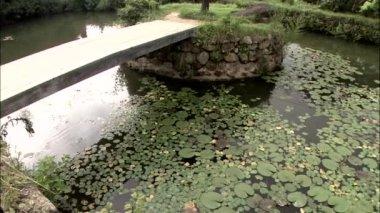 Bridge over pond with lotus leaves