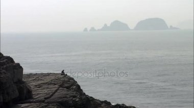 Man sitting on cliff near sea