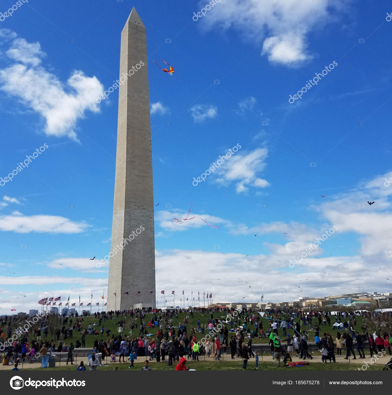 Festival degli aquiloni di fiore sul national mall di for Piani di washington