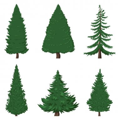 Set of Cartoon Pine Trees