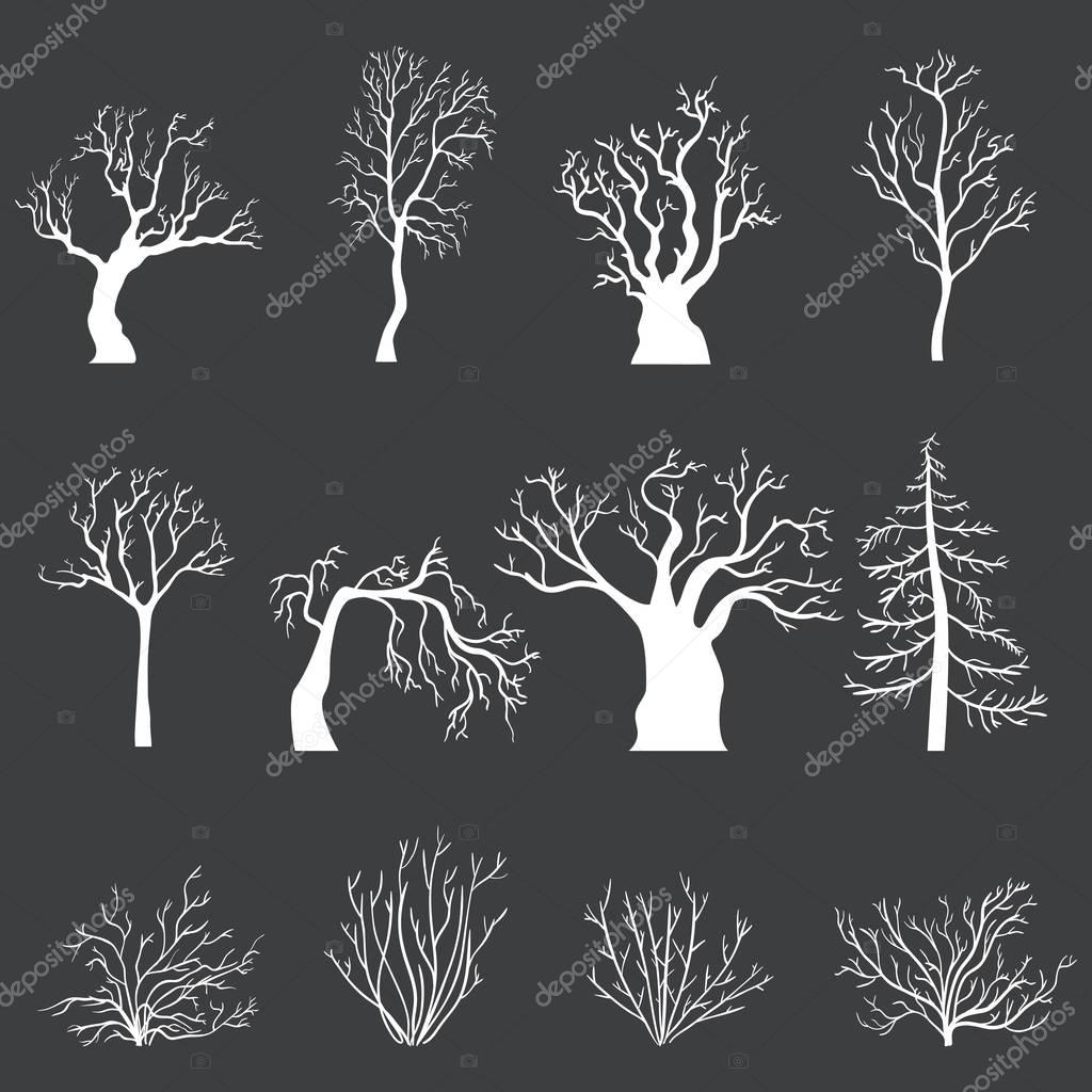 Set of White Silhouettes of Bare Trees