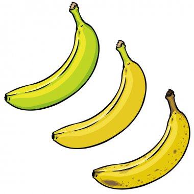 Banana Ripening Process