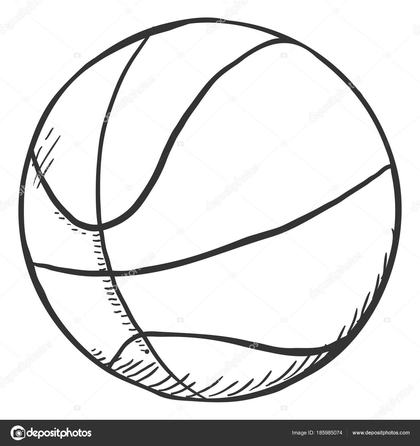 Sola Bola Bosquejo Lápiz Para Baloncesto Ilustración Vectorial ...