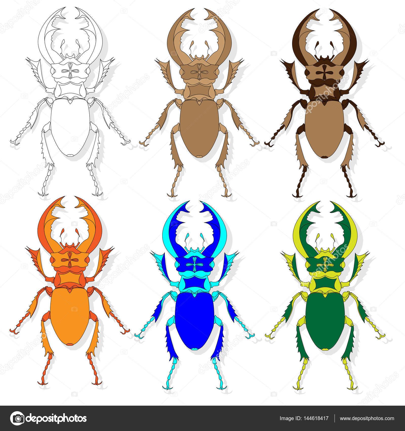 Käfer. Hand gezeichnete Skizze — Stockvektor © alekseyk1975 #144618417