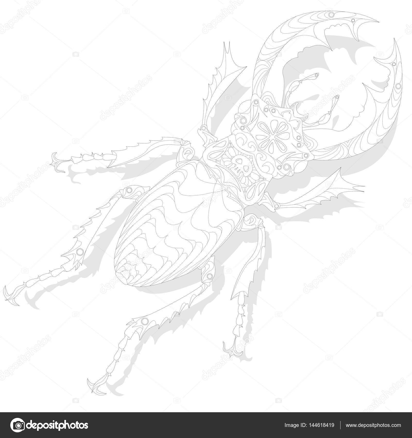 Käfer. Hand gezeichnete Skizze — Stockvektor © alekseyk1975 #144618419