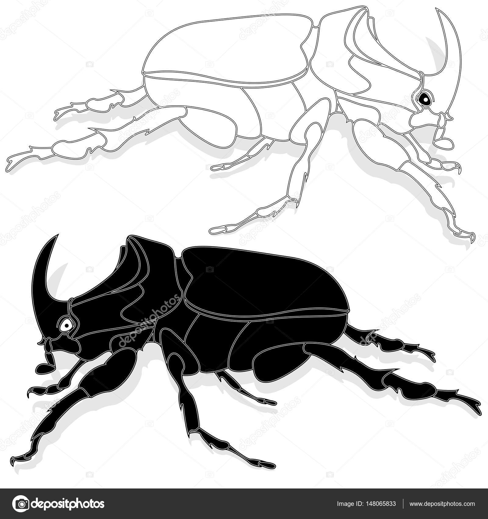 beetle hand drawn sketch stock vector alekseyk1975 148065833 Rhinoceros Snake beetle hand drawn sketch for adult coloring book page t shirt emblem tattoo with doodle zentangle design elements vector by alekseyk1975