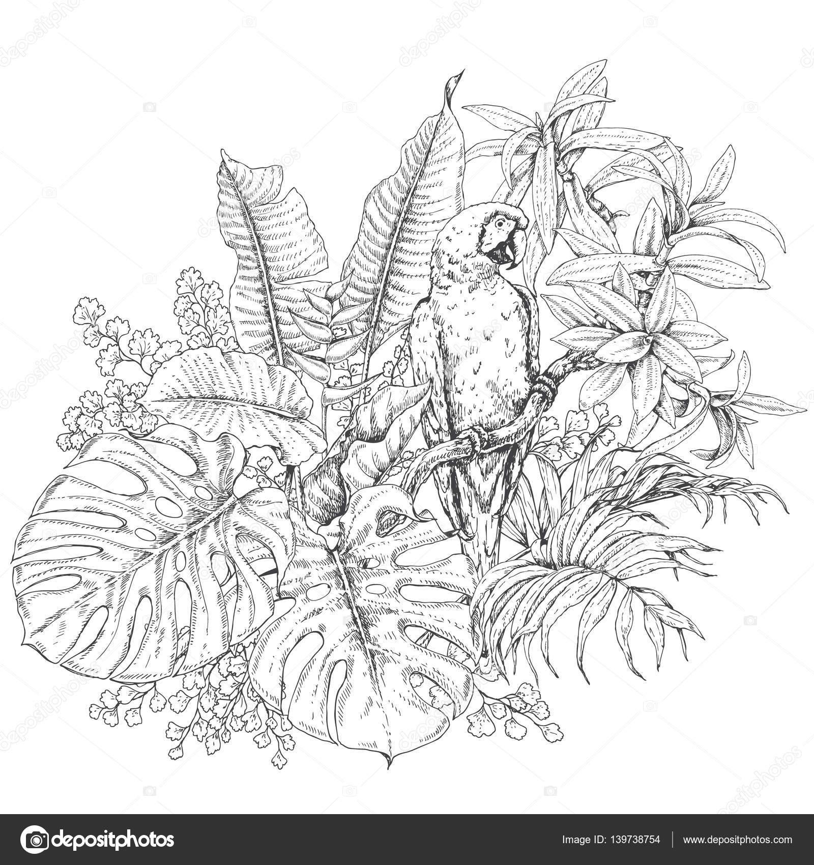 Plantas tropicales y el guacamayo de sesión — Vector de stock ...