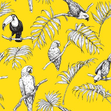 Parrots and Toucan Sketch Pattern