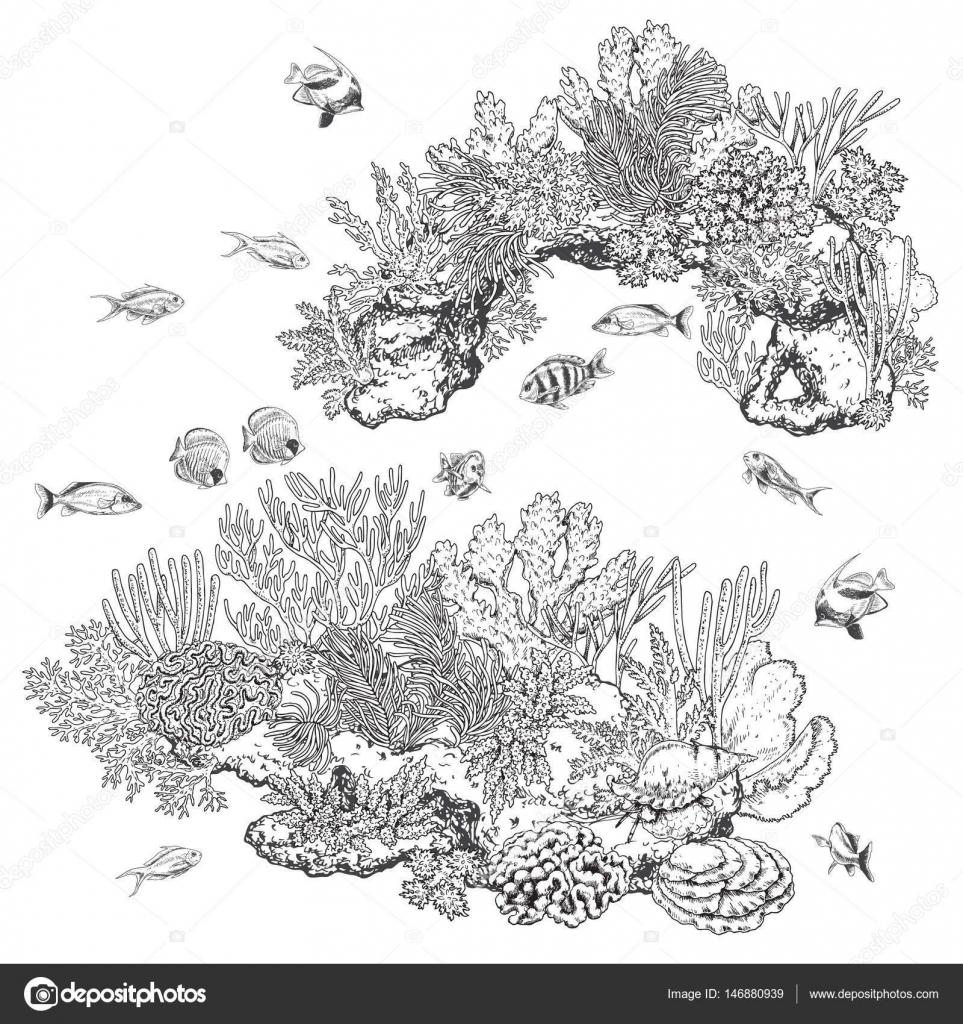 Arrecife de corales y peces — Archivo Imágenes Vectoriales © Valiva ...