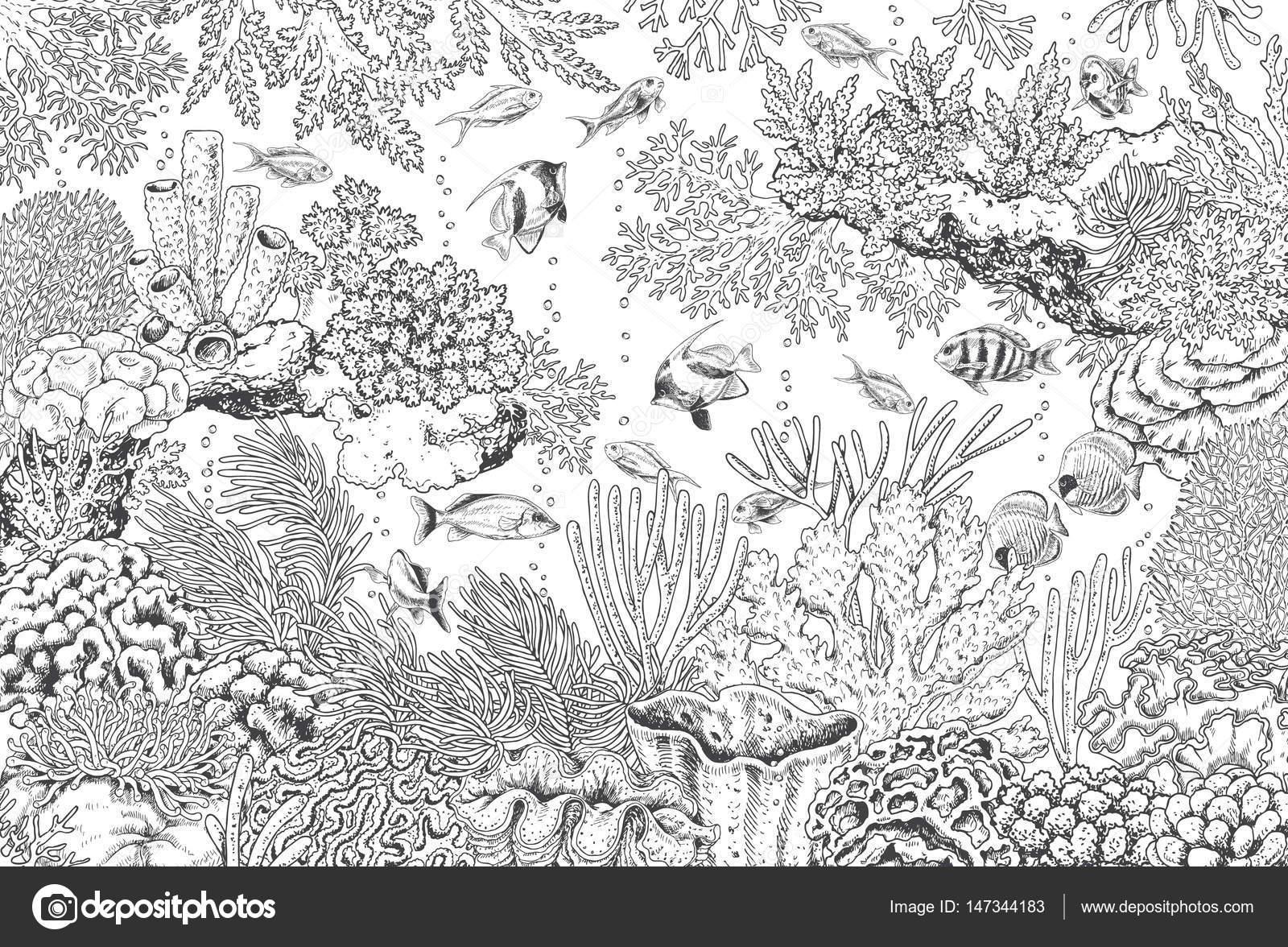 paisaje submarino con corales y peces — Vector de stock © Valiva ...