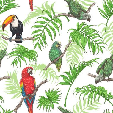 Parrots,  Toucan and Palm Leaves Pattern
