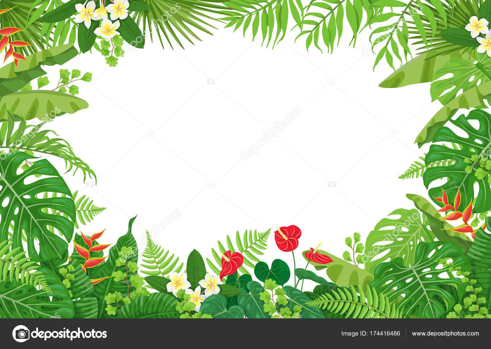 Marco de plantas tropicales vector de stock valiva 174416486 - Marcos para plantas ...