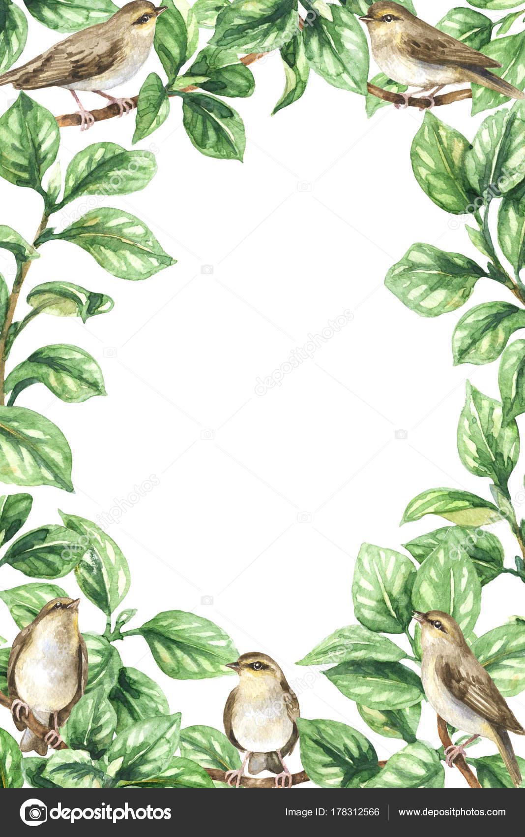 Vertikale Rahmen mit Vögel und Blätter — Stockfoto © Valiva #178312566