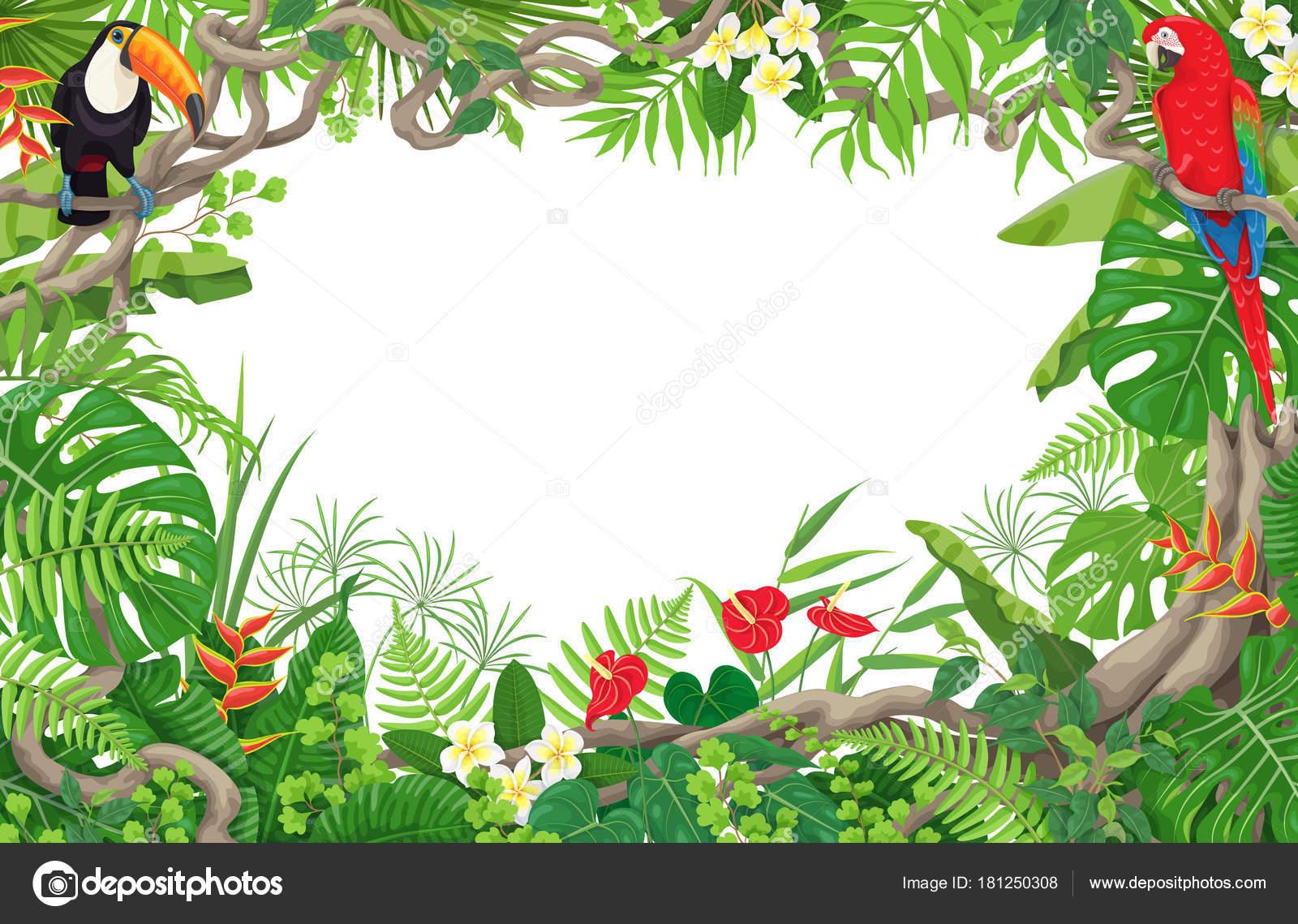 Tropische Pflanzen und Vögel Rahmen — Stockvektor © Valiva #181250308