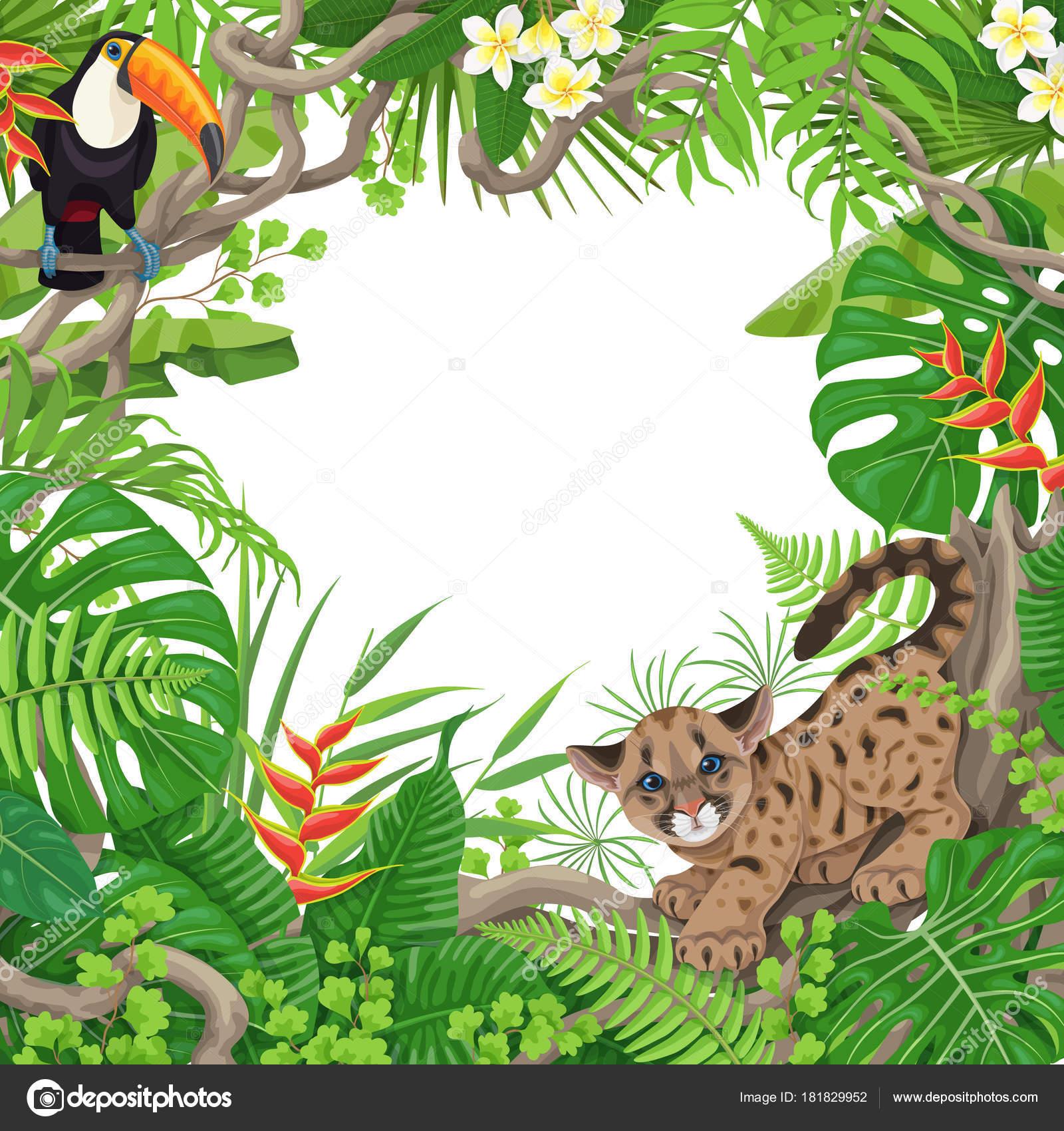 Im genes plantas y animales marco tropical con plantas y animales vector de stock valiva - Marcos para plantas ...