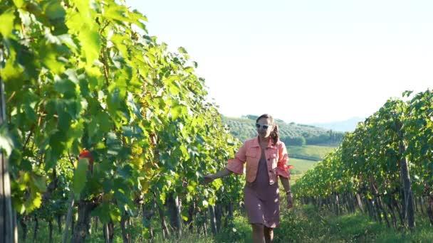 Mladá žena kráčející řadami vinic