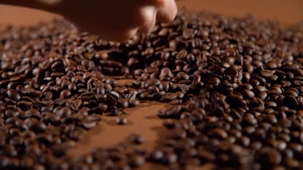 Closeup of Hand of Woman Touching Coffee Beans