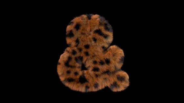 3D animierte pelzige haarige Zoo-Leopardenschrift mit Alphakanal-Ampersand
