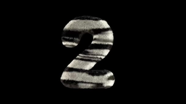 3D animierte, pelzige Zebra-Zebra-Schrift mit Alphakanal 2