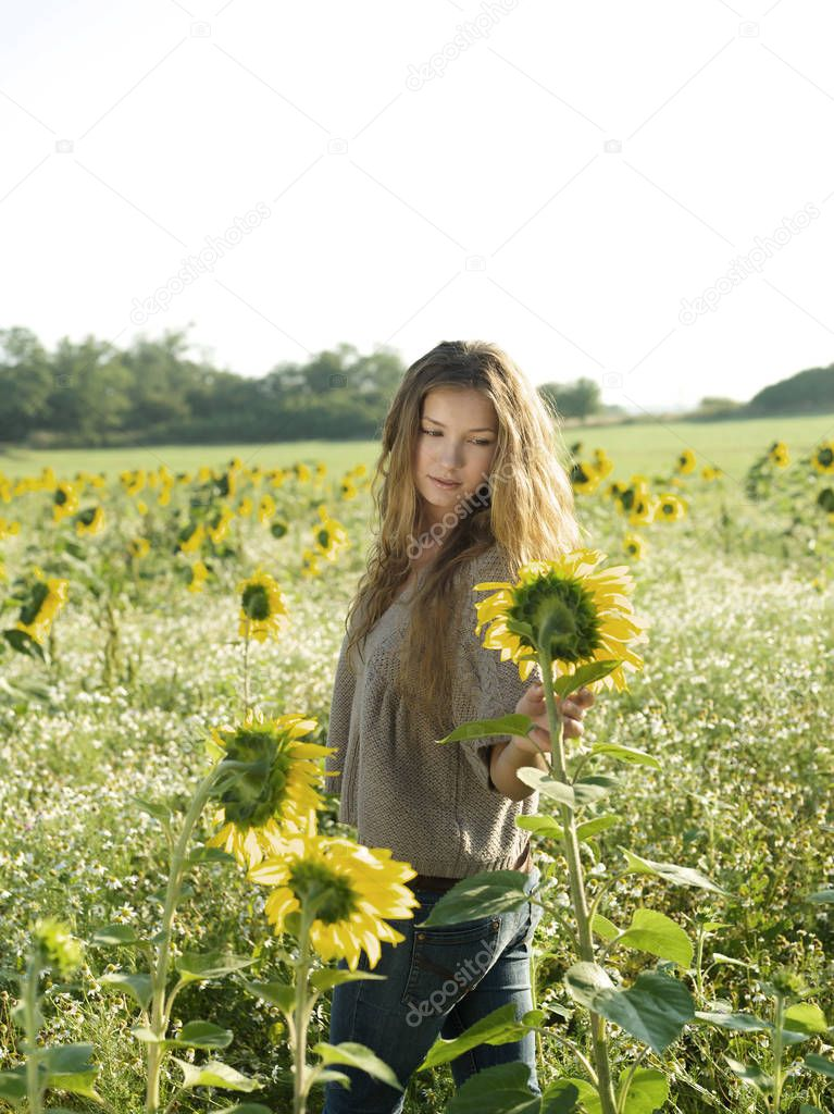 Young woman in field of sunflowers