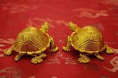 Zátiší z dvojice zlatých želv