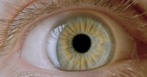 Dolly Shot Extreme Close Up Male Green Yellow Eye Mysterious Human Soul Natural Slow Motion 8k