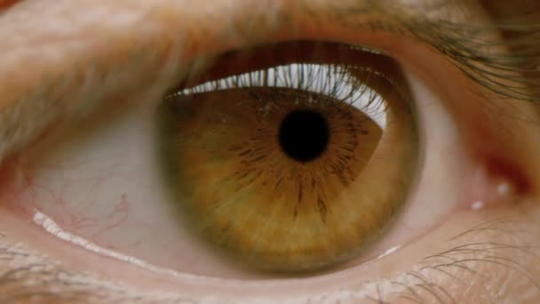 Dolly Shot Extreme Close Up Male Intense Brown Eye Colorful Human Beauty Fashion Slow Motion 8k