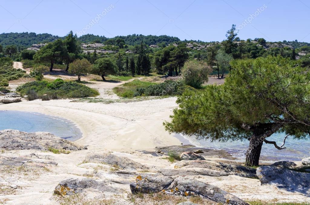 Beautiful scenery in Sithonia, Chalkidiki, Greece