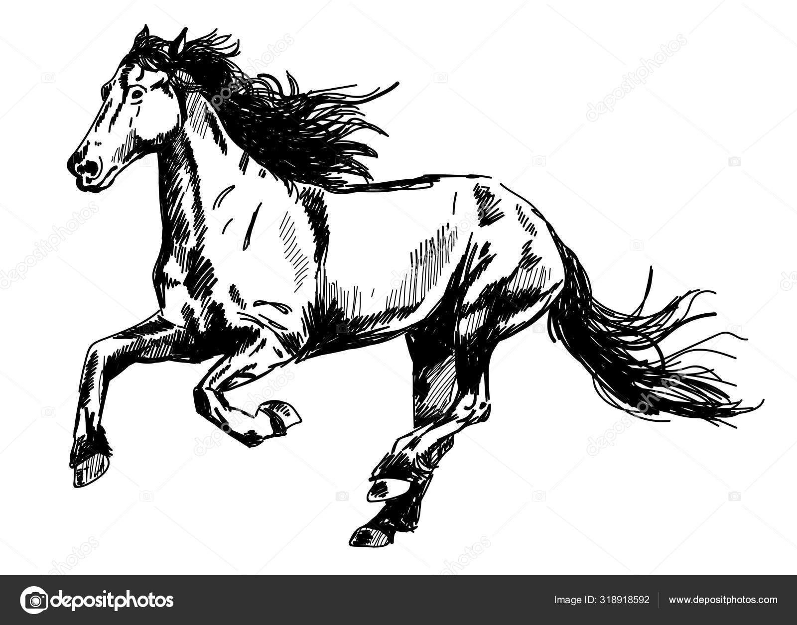 Running Horse Vector Freehand Drawing Engraving Stock Vector C Rant Goi 318918592
