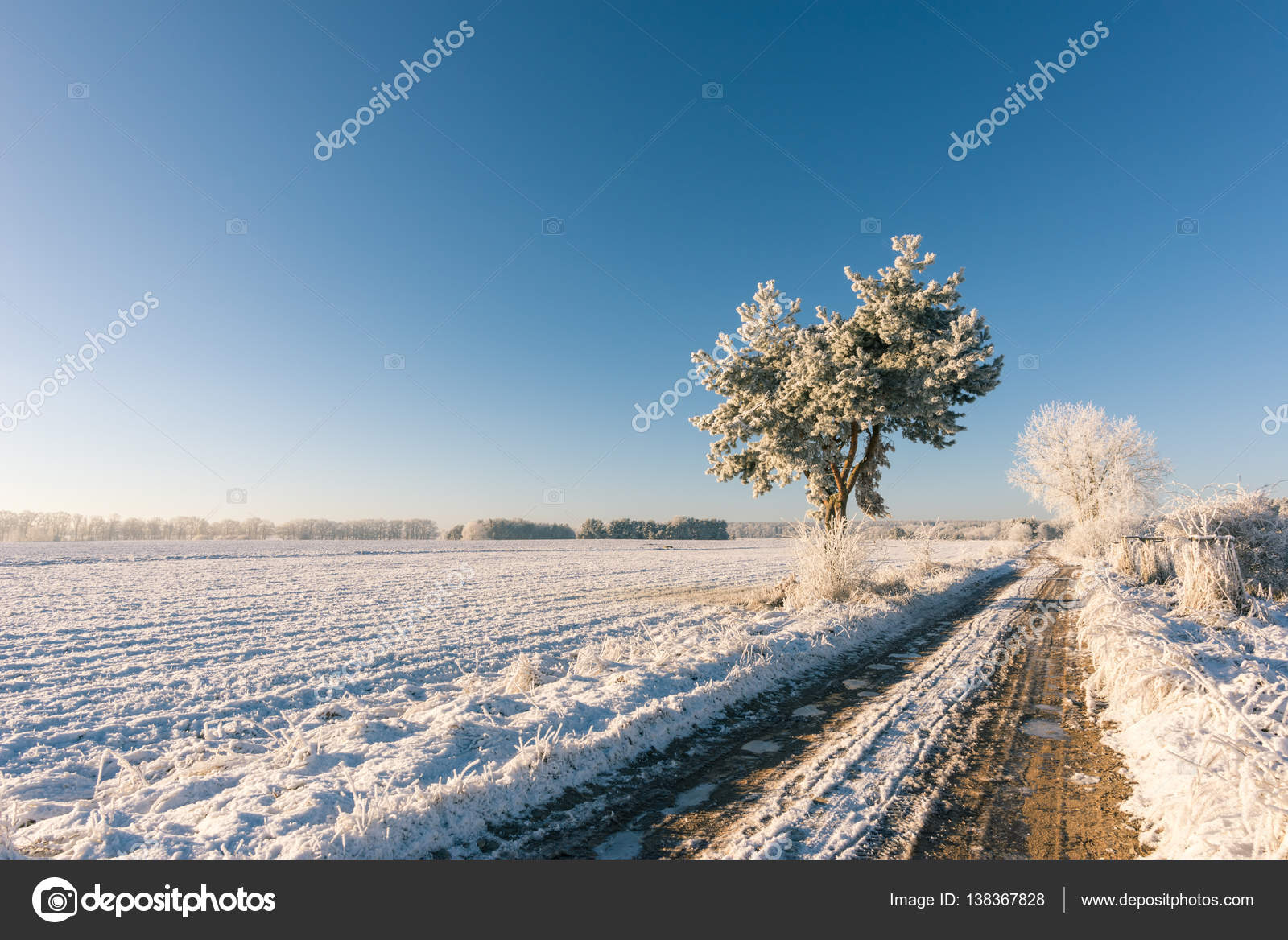 heavy rutted road with frosted water in winter landscape stock