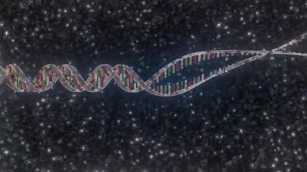 Die Doppelhelix-Struktur des DNA-Moleküls.