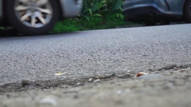 Wheels of cars moving on asphalt, wheel spinning. View asphalt road.