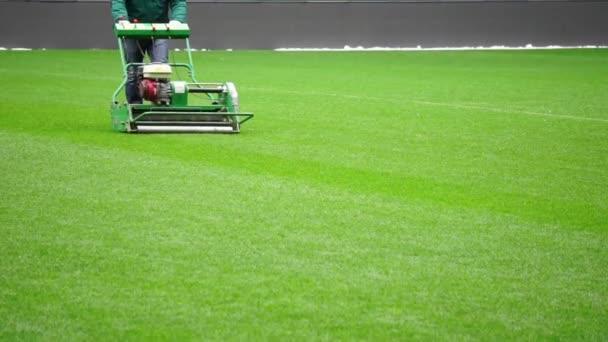 sekání trávy v fotbalový stadion