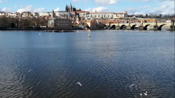 Široký pohled na Karlův most a Pražský hrad, mušky, český symbol