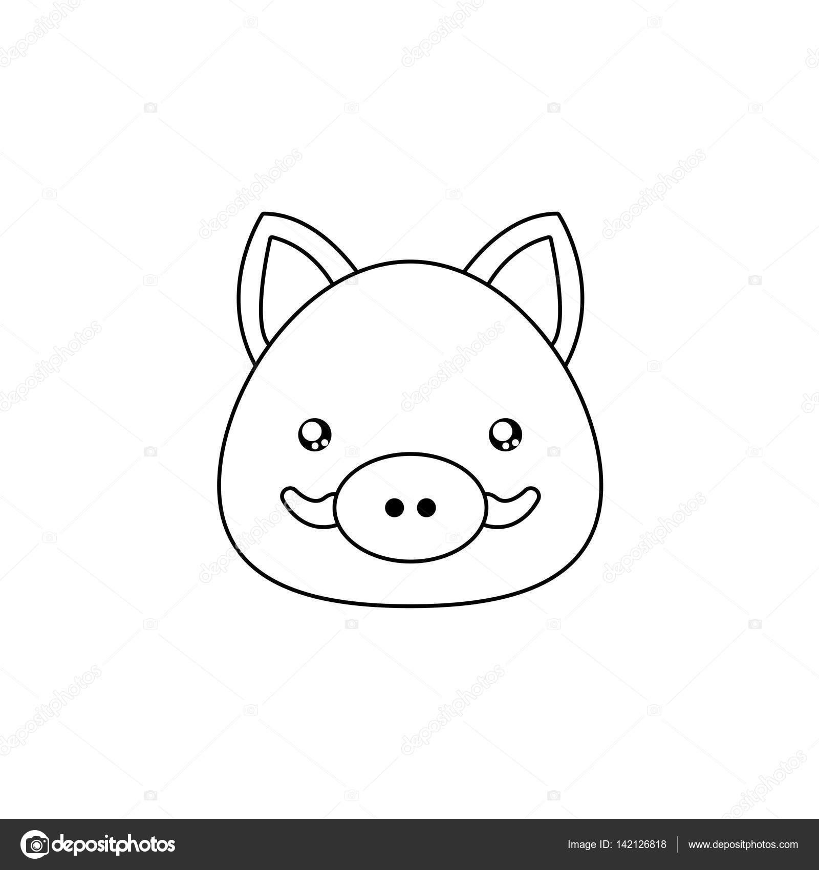 rosto de desenho de javali vetores de stock davids47 142126818
