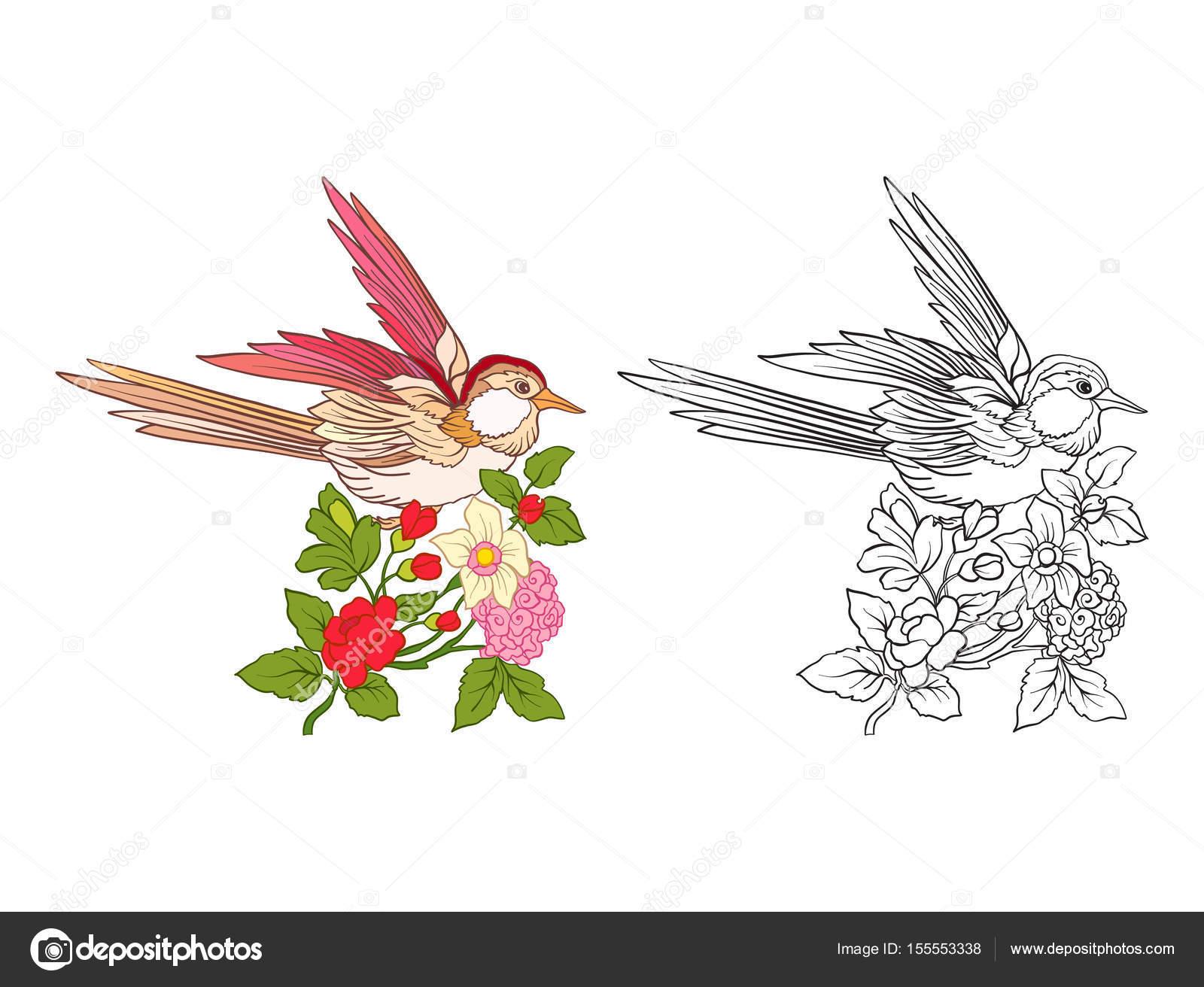 Flores y golondrinas. Conjunto de muestra de color y dibujo del ...