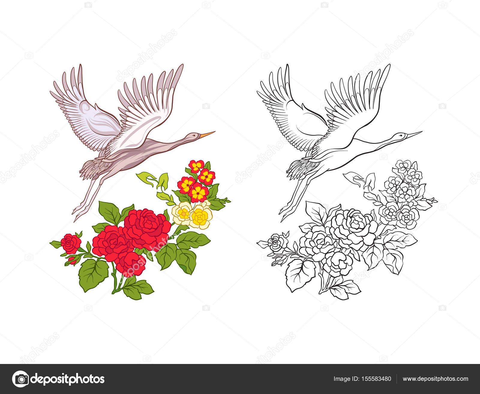 Flores y grúa. Conjunto de muestra de color y dibujo del contorno ...